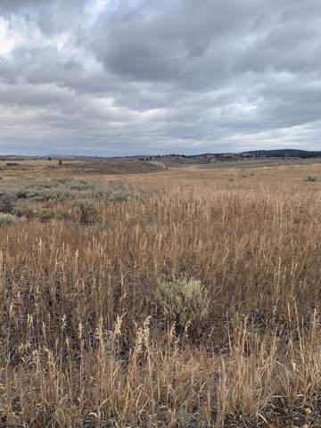 589 Leafcutter, Tetonia, ID 83452 (MLS #20-72) :: Sage Realty Group