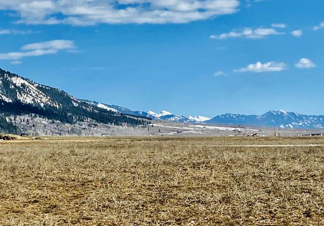 LOT 3 Double K Meadows, Etna, WY 83118 (MLS #20-785) :: West Group Real Estate