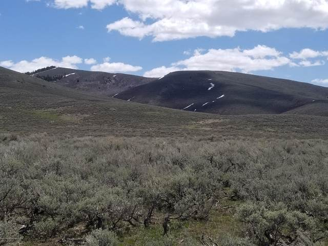 County Road 232, Cokeville, WY 83114 (MLS #20-889) :: Sage Realty Group