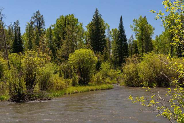 5075 W Rainbow Trout, Wilson, WY 83014 (MLS #20-902) :: Sage Realty Group