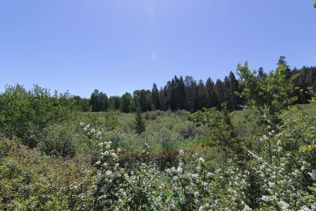APPX 4000 W 10000 S, Victor, ID 83455 (MLS #20-933) :: Sage Realty Group