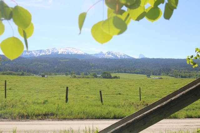 LOT 1 & 2 W Dry Creek Meadows, Alta, WY 83414 (MLS #20-991) :: West Group Real Estate