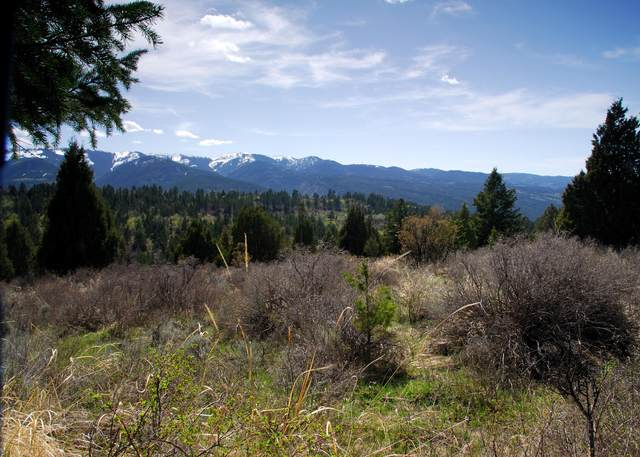 Lot 31 Blk 3 Cutthroat Run, Irwin, ID 83428 (MLS #21-1027) :: West Group Real Estate