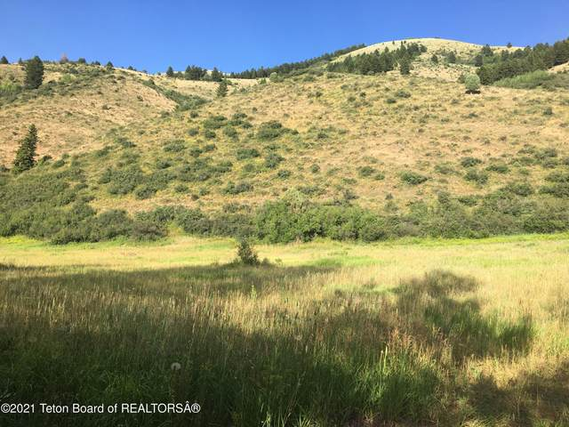 Lot 28 Rockbridge Drive, Afton, WY 83110 (MLS #21-1132) :: West Group Real Estate