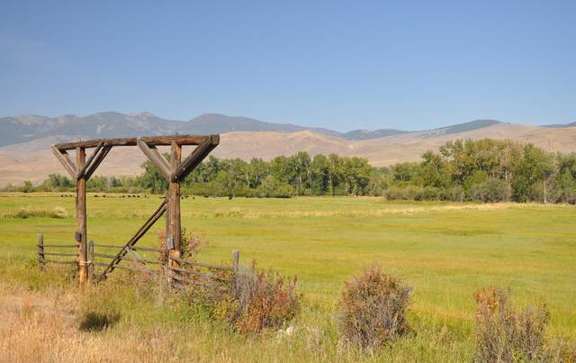 45 MULESHOE Rd, Salmon, ID 83467 (MLS #21-1136) :: West Group Real Estate