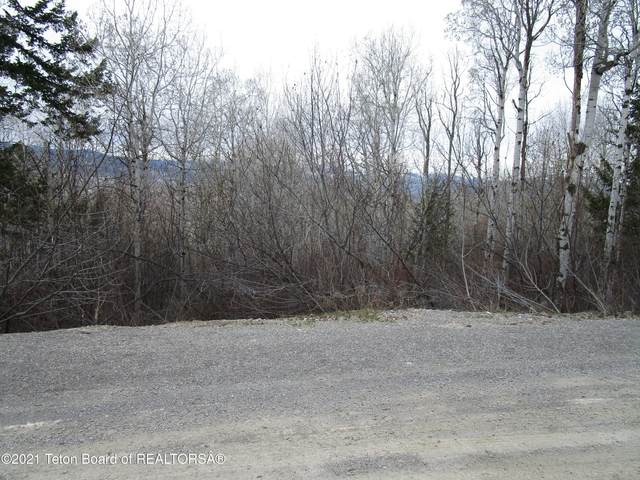 LOT 48 Evergreen Dr., Star Valley Ranch, WY 83127 (MLS #21-1385) :: West Group Real Estate