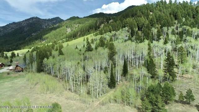 LOT 2 Stewart Creek Road, Etna, WY 83118 (MLS #21-1580) :: Coldwell Banker Mountain Properties