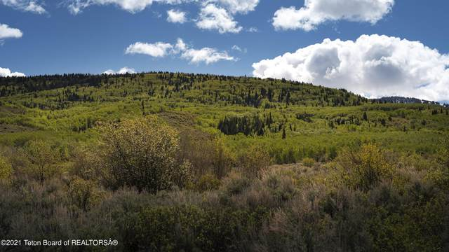 85 Perimeter Dr, Alta, WY 83414 (MLS #21-1837) :: Coldwell Banker Mountain Properties