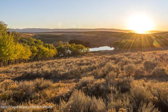 2084 Moose Path Way, Tetonia, ID 83452 (MLS #21-1871) :: Coldwell Banker Mountain Properties