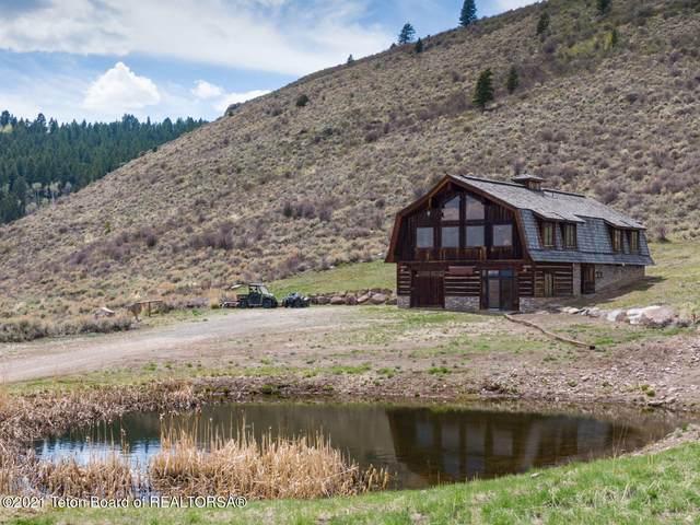 5676 Big Game View Rd, Tetonia, ID 83452 (MLS #21-2047) :: Coldwell Banker Mountain Properties