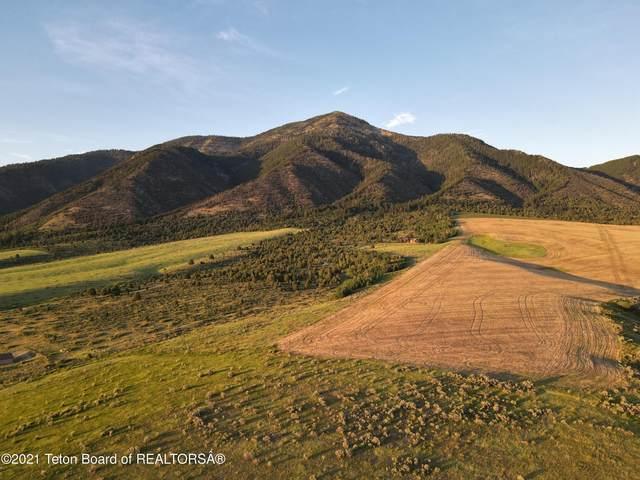 LOT 4 Sumac Loop, Swan Valley, ID 83449 (MLS #21-2436) :: West Group Real Estate