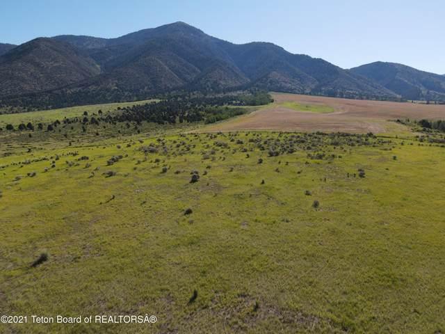 LOT 5 Sumac Loop, Swan Valley, ID 83449 (MLS #21-2437) :: West Group Real Estate