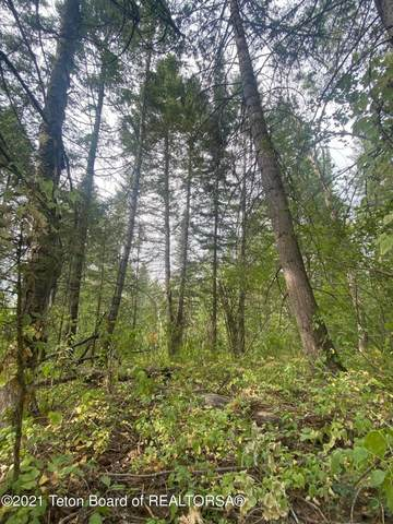 3100 Sorensen Crk, Victor, ID 83455 (MLS #21-2636) :: Coldwell Banker Mountain Properties
