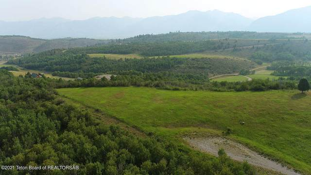 LOT 3 Strawberry Hills, Bedford, WY 83112 (MLS #21-2754) :: West Group Real Estate