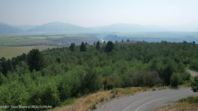 LOT 11 Wagon Wheel Road, Swan Valley, ID 83449 (MLS #21-2758) :: Coldwell Banker Mountain Properties