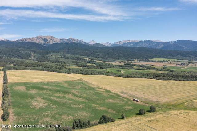 TRAVIS Teton Ranch, Alta, WY 83414 (MLS #21-3012) :: West Group Real Estate