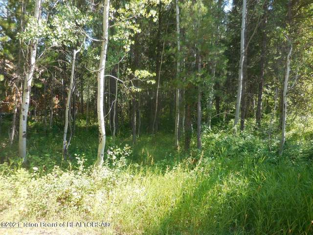 LOT 3 Pine Ct, Alpine, WY 83128 (MLS #21-3347) :: Coldwell Banker Mountain Properties