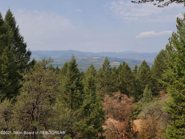 LOT 73 Spruce Drive, Star Valley Ranch, WY 83127 (MLS #21-3361) :: West Group Real Estate