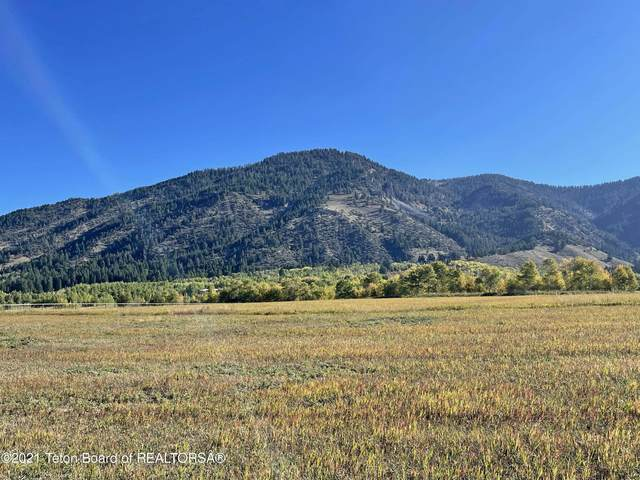 LOT 5 Stonefly Ranch, Etna, WY 83118 (MLS #21-3400) :: Coldwell Banker Mountain Properties