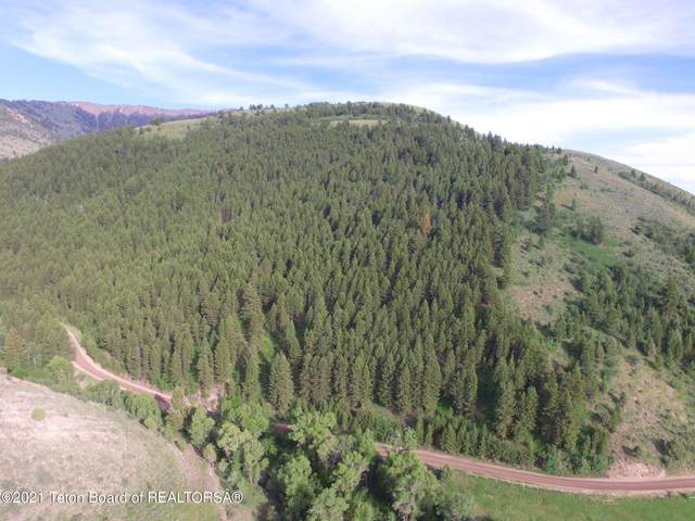 Dry Creek Co Rd 146, Afton, WY 83110 (MLS #21-3453) :: West Group Real Estate