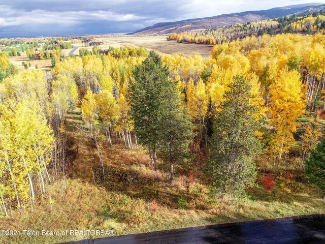 8 Blackfoot Trl, Victor, ID 83455 (MLS #21-3590) :: Coldwell Banker Mountain Properties