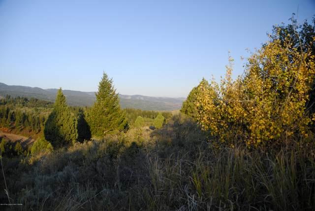 LOT49B1 Cutthroat Run, Irwin, ID 83428 (MLS #21-99) :: Coldwell Banker Mountain Properties
