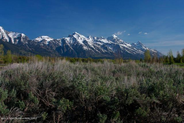 Address Not Published, Jackson, WY 83001 (MLS #14-1241) :: Sage Realty Group