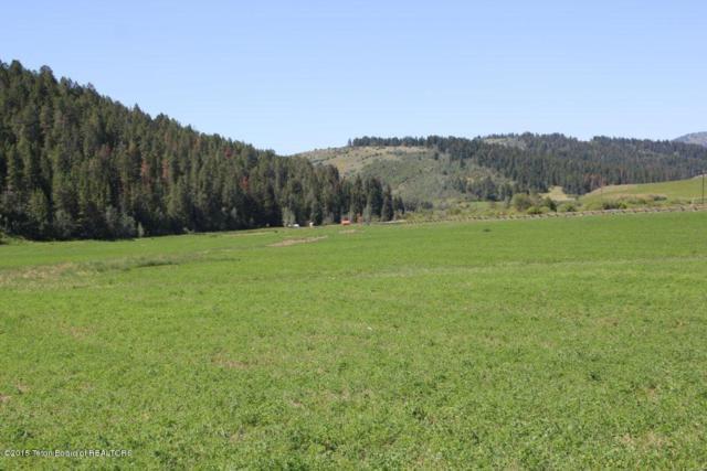 48 Grouse Loop, Freedom, ID 83120 (MLS #15-2161) :: Sage Realty Group