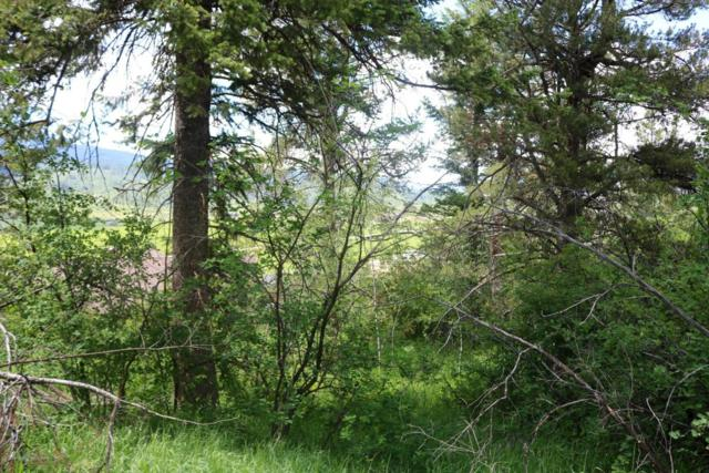 Hawthorne Dr, Alpine, WY 83128 (MLS #17-1709) :: West Group Real Estate