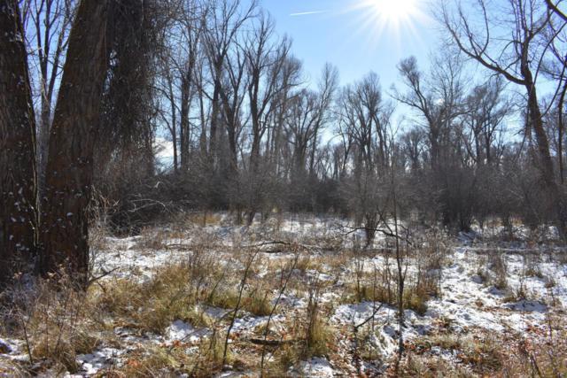 11 Leigh Creek Lane, Tetonia, ID 83452 (MLS #17-1794) :: Sage Realty Group