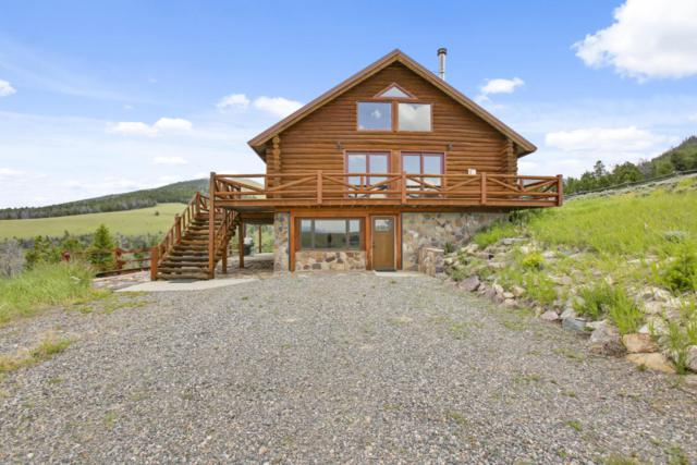 39 Geyser Creek Connection, Dubois, WY 82513 (MLS #17-1831) :: West Group Real Estate