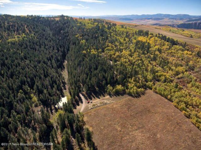 30 ACRES Robinson Lane Co Rd 124, Bedford, WY 83112 (MLS #17-2743) :: Sage Realty Group