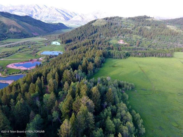 LOT 4 Willow Creek Wilderness Ranch, Bedford, WY 83112 (MLS #17-696) :: West Group Real Estate