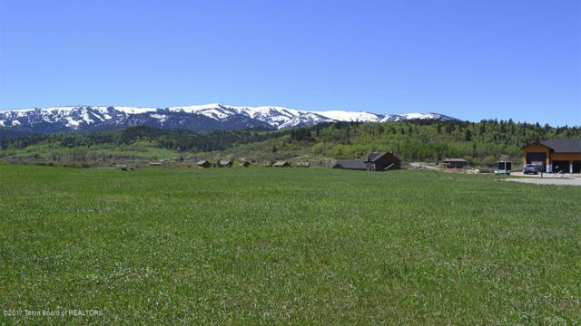 LOT 29 River Trail Drive, Alpine, WY 83128 (MLS #17-879) :: Sage Realty Group