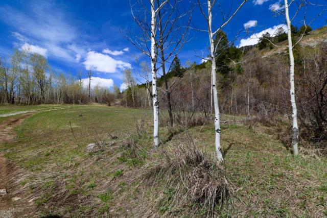 23 & 55 Strawberry Creek Rd, Bedford, WY 83112 (MLS #18-1079) :: Sage Realty Group