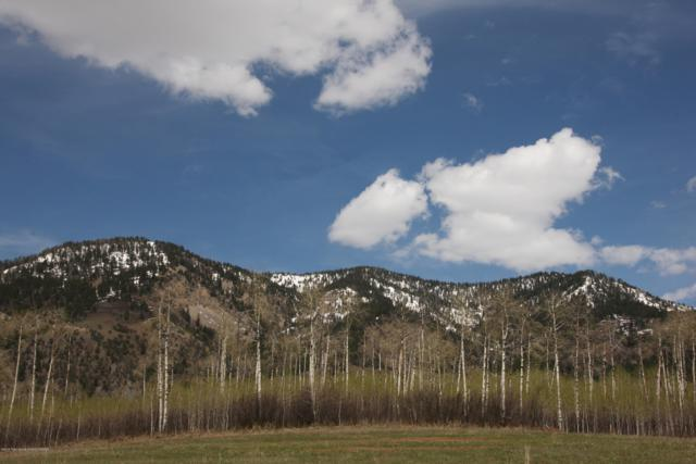 LOT 30 Aspens At Clark Lane, Etna, WY 83118 (MLS #18-1122) :: West Group Real Estate