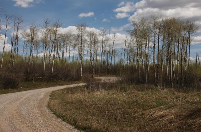 LOT 37 Aspens At Clark Lane, Etna, WY 83118 (MLS #18-1123) :: West Group Real Estate