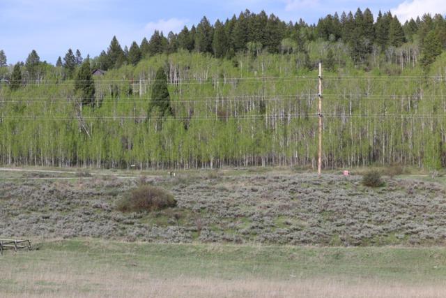 Address Not Published, Alpine, WY 83128 (MLS #18-1133) :: Sage Realty Group