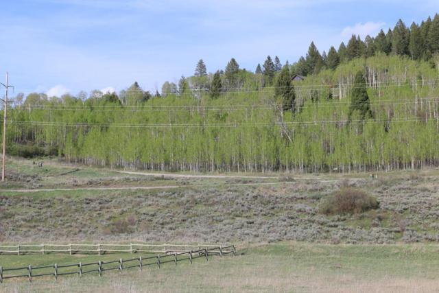 Address Not Published, Alpine, WY 83128 (MLS #18-1134) :: Sage Realty Group