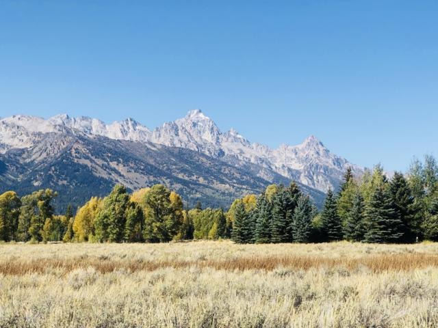 9605 N Avalanche Canyon Rd, Jackson, WY 83001 (MLS #18-1589) :: Sage Realty Group