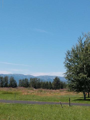 799 Streamside St, Driggs, ID 83422 (MLS #18-2258) :: West Group Real Estate