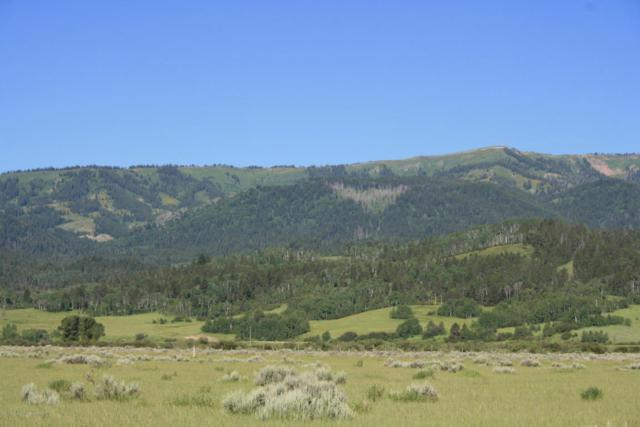 LOT 23 Fox Trail, Alpine, WY 83128 (MLS #18-599) :: Sage Realty Group