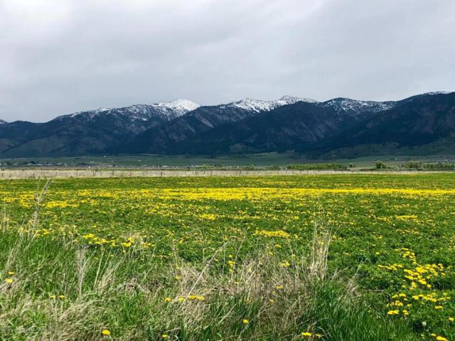 Spring Meadow Lane, Freedom, WY 83120 (MLS #18-681) :: Sage Realty Group