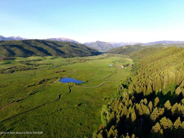 LOT 1 Willow Creek  Ranch, Thayne, WY 83127 (MLS #18-776) :: West Group Real Estate