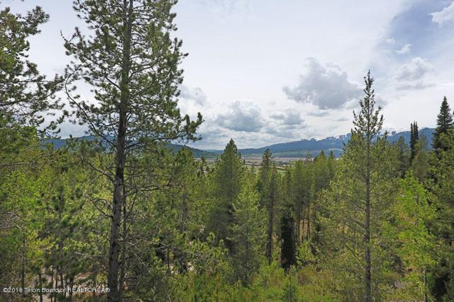 LOT 02 Halfmoon Ct, Alpine, WY 83128 (MLS #18-935) :: Sage Realty Group