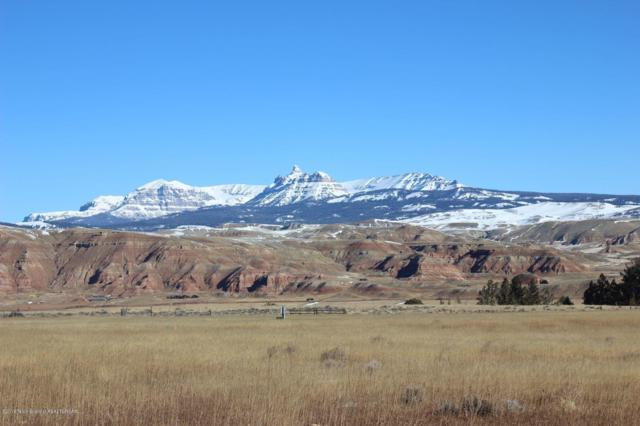 TBD Bald Mountain Road Lot 4, Dubois, WY 82513 (MLS #19-413) :: West Group Real Estate