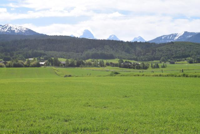1745 Alta North Road, Alta, WY 83414 (MLS #19-463) :: Sage Realty Group