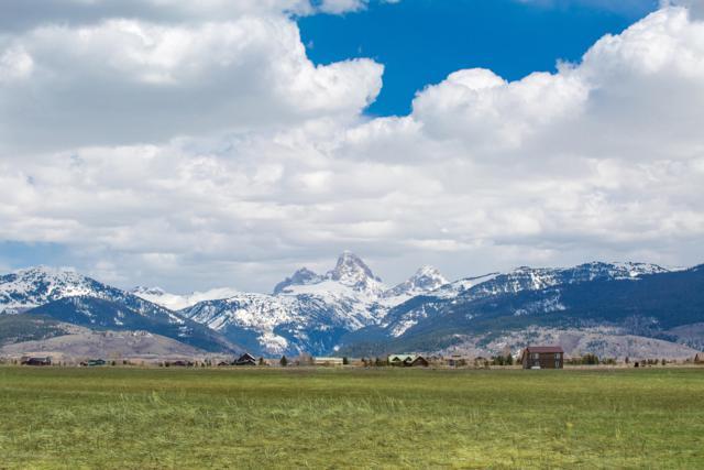 533 Treasure Mountain Loop, Driggs, ID 83422 (MLS #19-569) :: West Group Real Estate