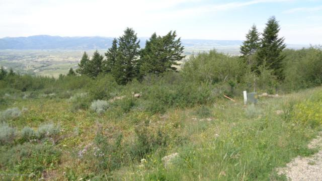 3151 Canyon Crest, Victor, ID 83452 (MLS #19-60) :: Sage Realty Group