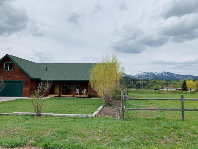 189 Red Tail Path, Alpine, WY 83128 (MLS #19-8) :: West Group Real Estate